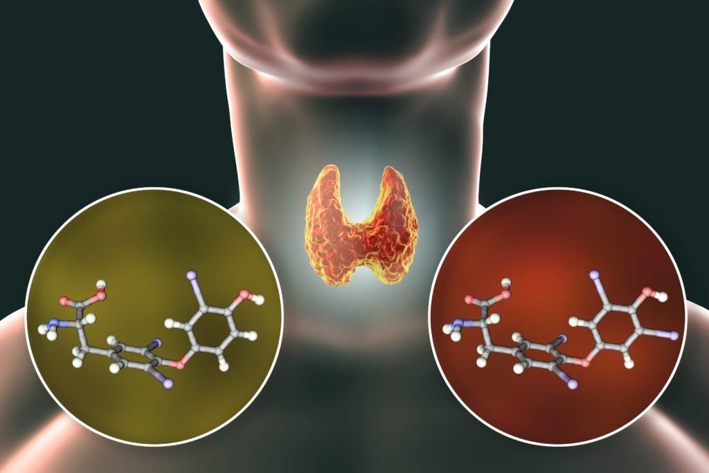 Geheime Dickmacher entlarvt: Mit diesen Chemikalien im Essen wird unser Stoffwechsel erheblich gestört