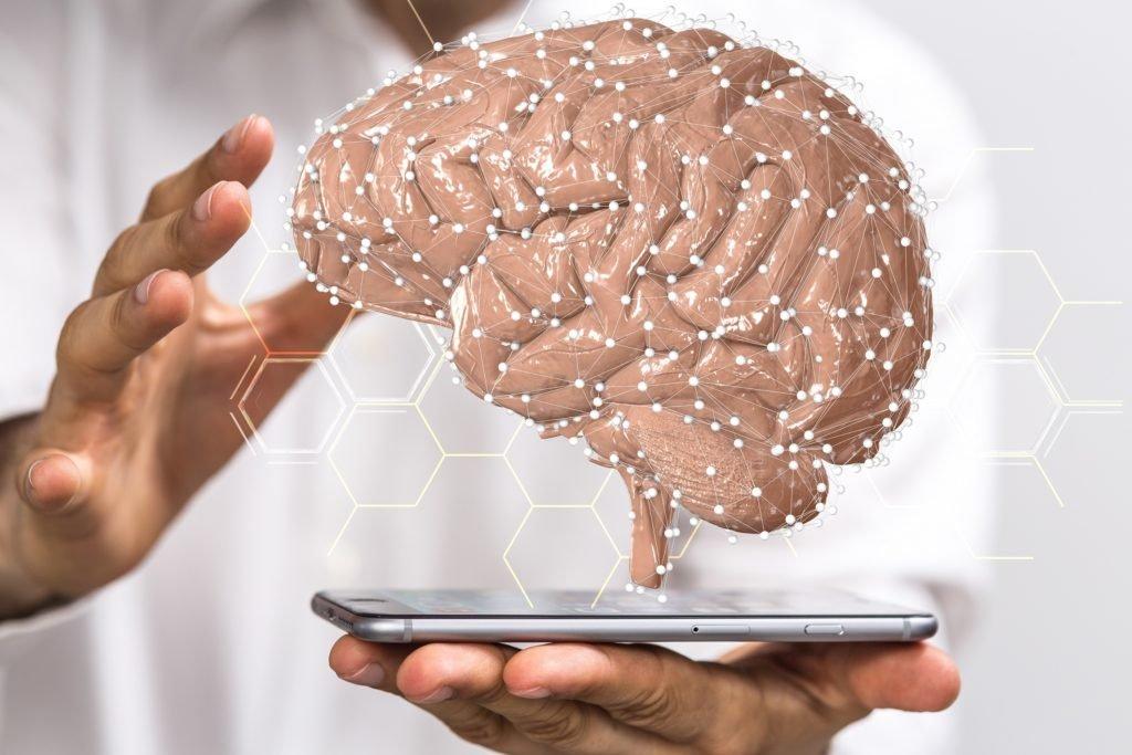 Hirnforschung: Das Geheimnis der Intelligenz ist endlich enträtselt