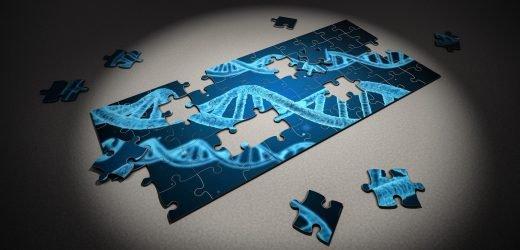 Wissenschaftler eng in der auf Zellen, die Fahrt Immunantwort auf Krebs