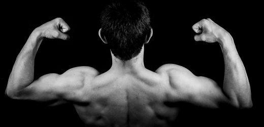 Spender Muskel-training vor der transplantation beschleunigt den Prozess der rehabilitation bei Patienten