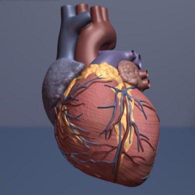 Diabetes-Medikament angezeigt, um zu reduzieren das Risiko von Herzerkrankungen in nicht-diabetischen Patienten