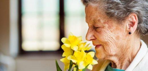 Schlechter Geruchssinn im Alter ein Hinweis auf erhöhtes Sterberisiko