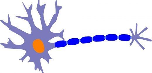 Studie von Patienten mit multipler Sklerose zeigt 18 Prozent falsch diagnostiziert