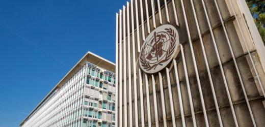WHO: Telemedizin kann persönlichen Kontakt nicht ersetzen