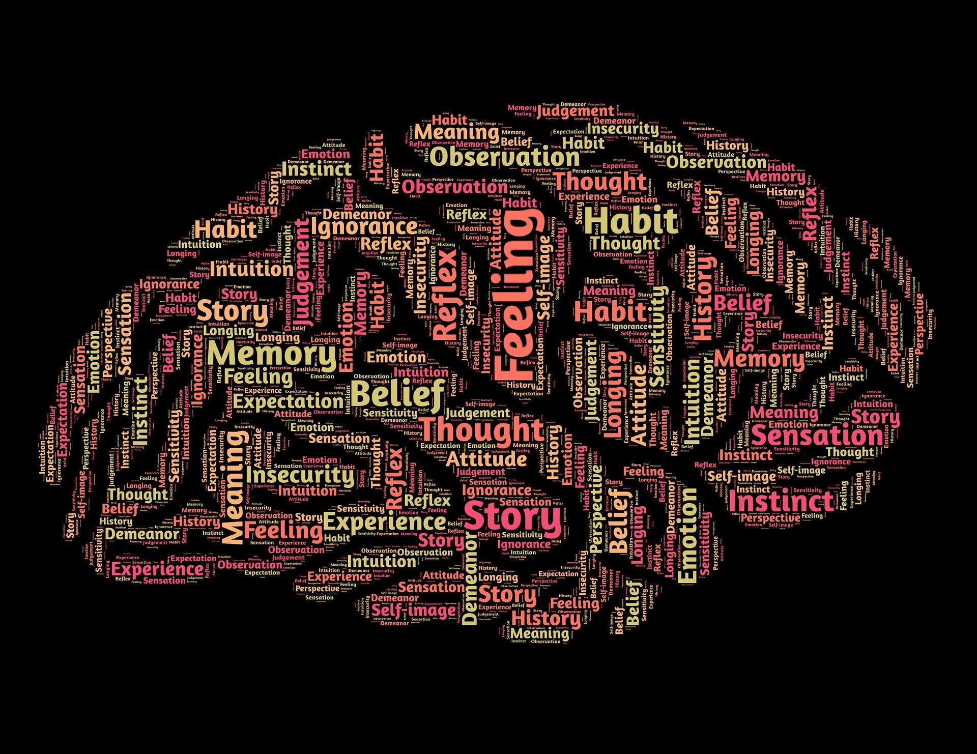 Neurowissenschaftler verfolgen Sie ein Gehirn-Schaltung-Filter, die unerwünschte sensorische input