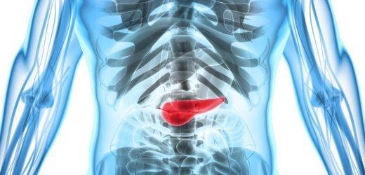 Frühe Forschung zeigt einen Weg zur Entwicklung wirksamer Therapien gegen Bauchspeicheldrüsenkrebs