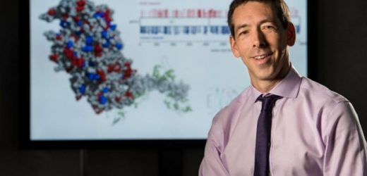 Gen-Netzwerken, offenbaren übergang von gesund zu Versagen Herz