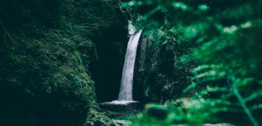 Die (traurige) Wahrheit über Biowasser