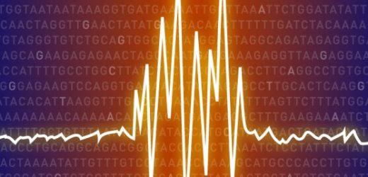 DNA-Sequenzierung Studie schlägt vor, dass gemeinsame genetische basis für Epilepsie
