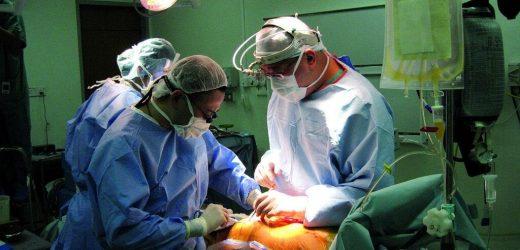 Antibiotika vor der Lebertransplantation führen zu besseren Ergebnissen