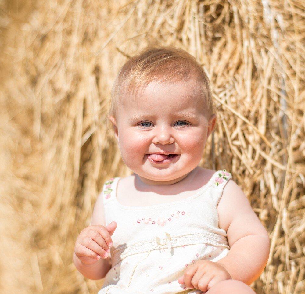 Halten von Vieh auf dem Hof nur könnte helfen, Ihre Babys Immunsystem
