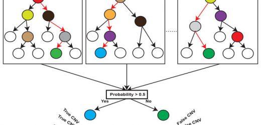 Neue Methode bei der Suche nach Deletionen und Duplikationen im menschlichen Genom