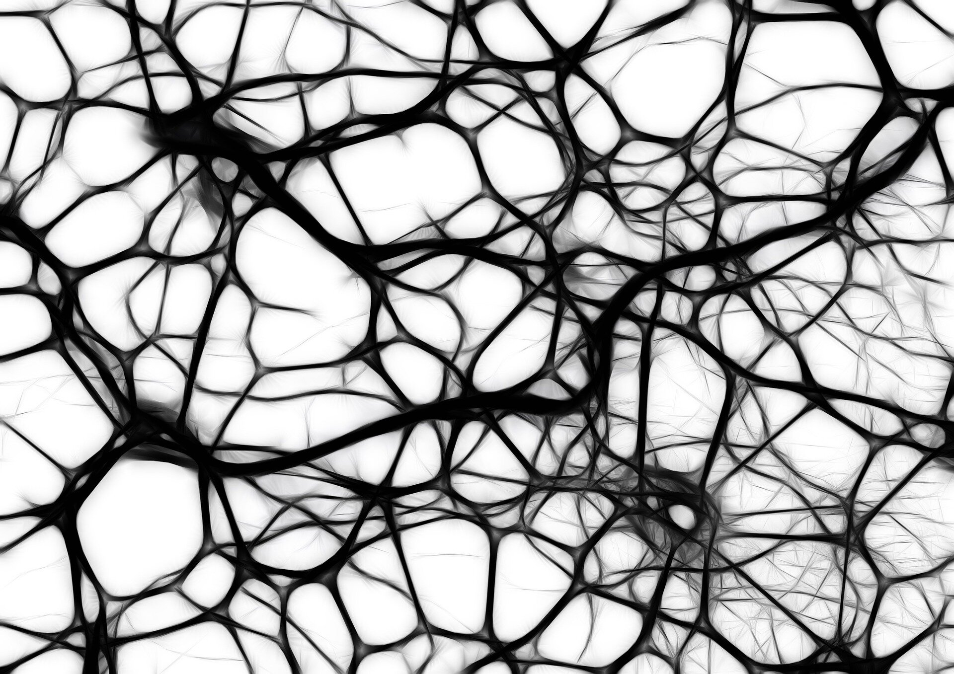Das magnetische Stammzellen verbessern Knorpel reparieren?
