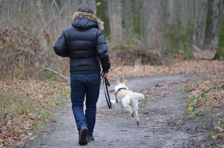 Altern mit Haustiere ist nicht nur eine sentimentale Anliegen, sondern eine Frage der Gesundheit und wellness