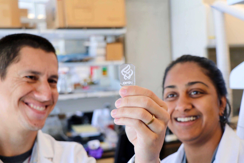 """""""Knochen in eine Schale' öffnet in einem neuen Fenster auf Krebs initiation, Metastasen, Knochen-Heilung"""