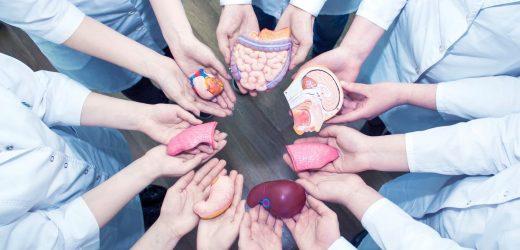 Organ-Transplantationen: Warum sind so viele Menschen abschrecken Spenden