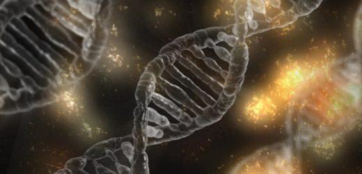 Studie schlägt vor, dass das menschliche Wachstumshormon kann Umgekehrt epigenetische aging