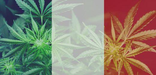 Frankreich vergisst goldene Zeitalter von medizinischem Marihuana
