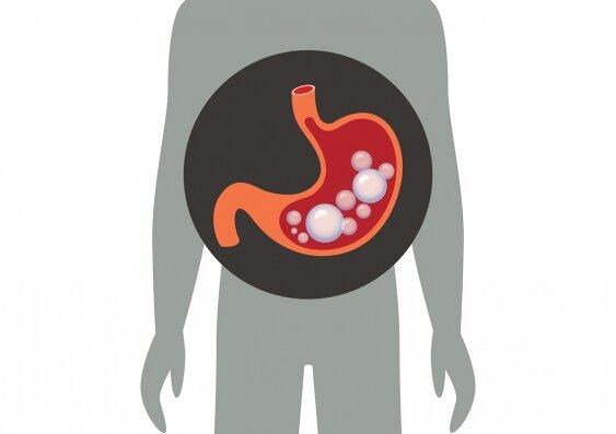 Gutsy Aufwand zu erstellen umfassende Untersuchung der intestinalen Gasen