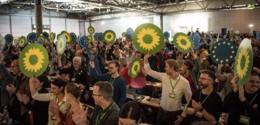 Grünen steht Homöopathie-Konflikt bevor