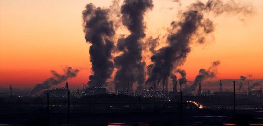 Umweltgifte beeinträchtigen Immunsystem über mehrere Generationen