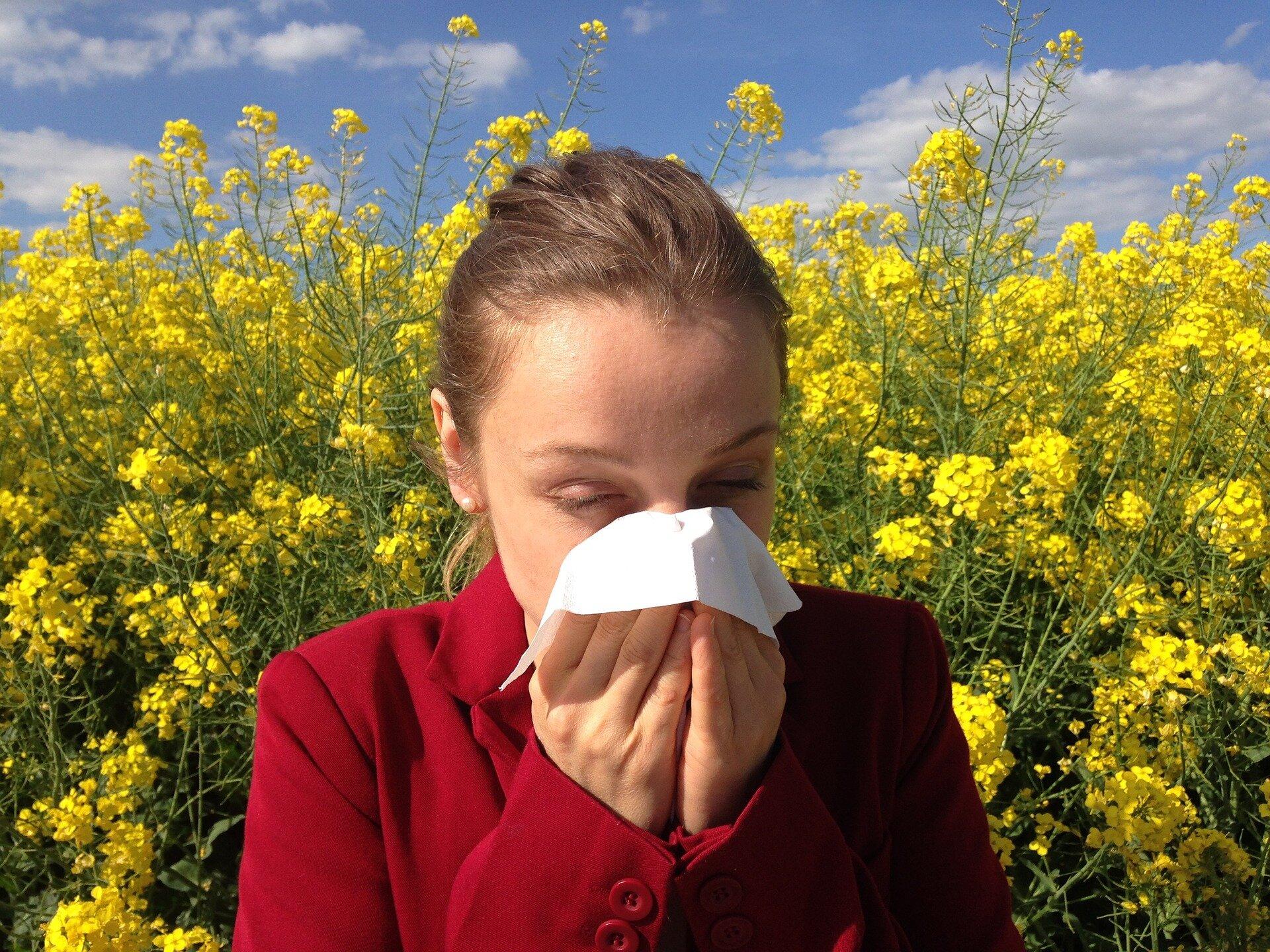 Suche nach der Quelle der Antikörper würde helfen, behandeln Allergien