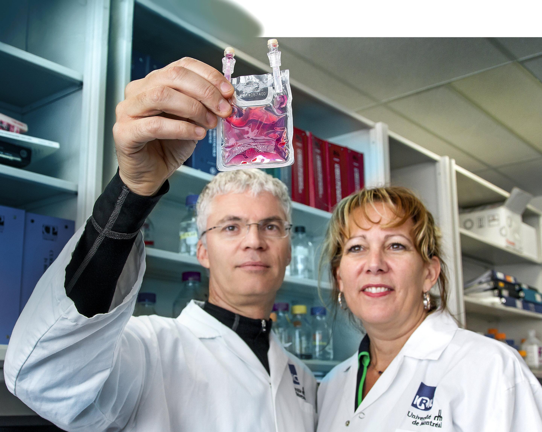 Blut Krebs: Neue generation stem cell Transplantation signifikant reduziert Komplikationen für die Patienten
