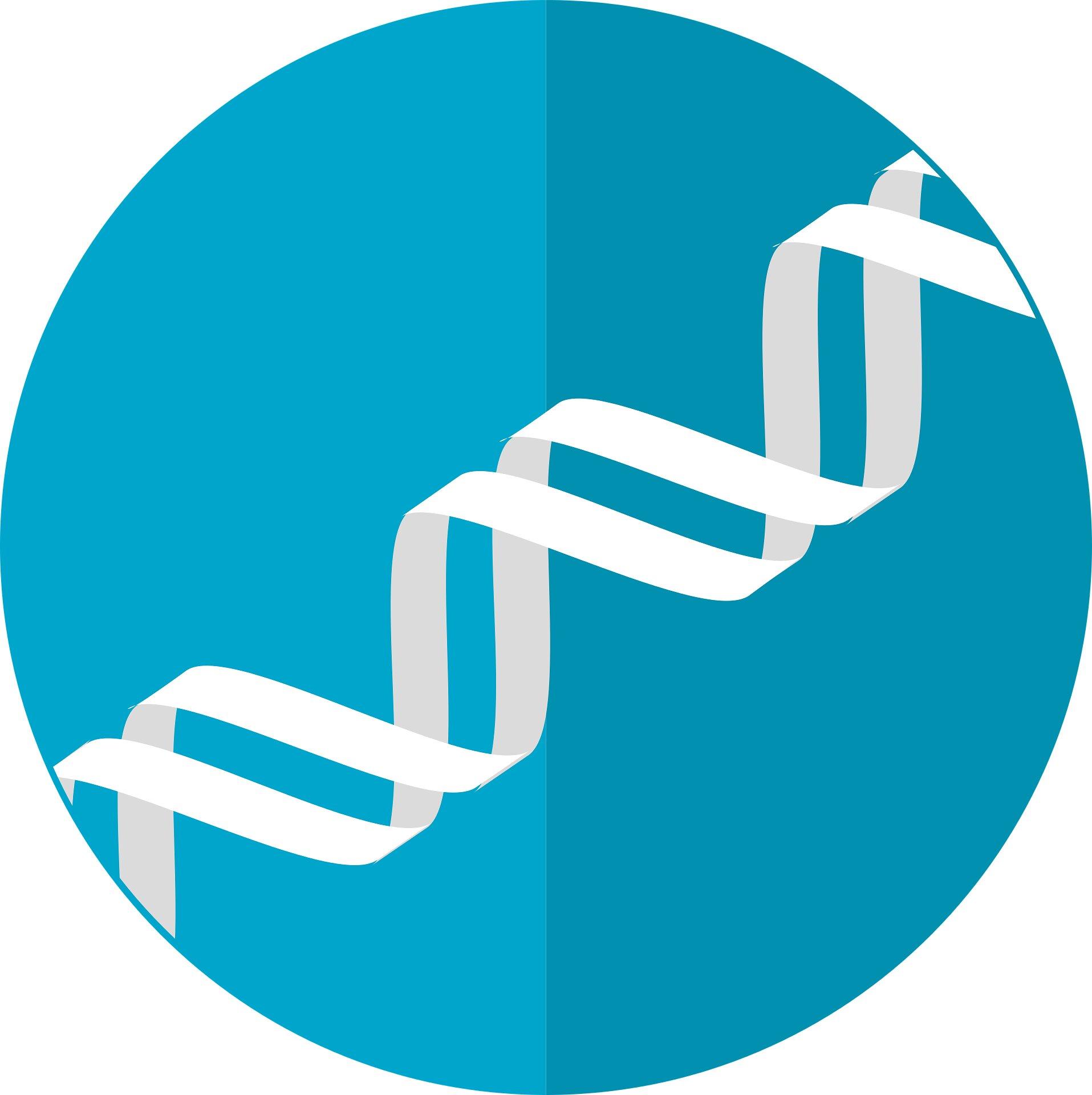 Gen-Netzwerk Funken künftige Autismus-Behandlung