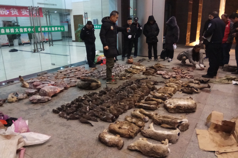 China-virus belebt die Anrufe zu stoppen Handel mit wildlebenden Tier –