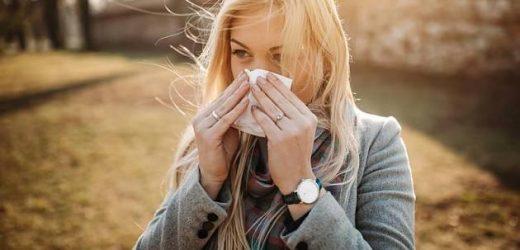 Milder Winter: Der Pollenflug beginnt: Hasel und Erle quälen Allergiker