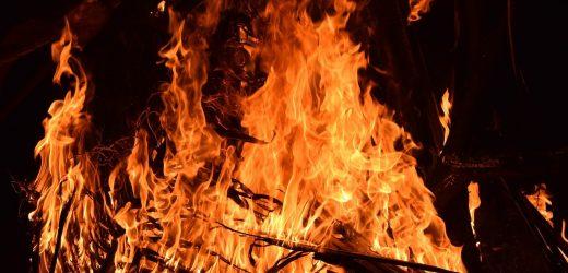 Nationale Antwort erforderlich für das psychologische trauma der australischen Buschfeuer