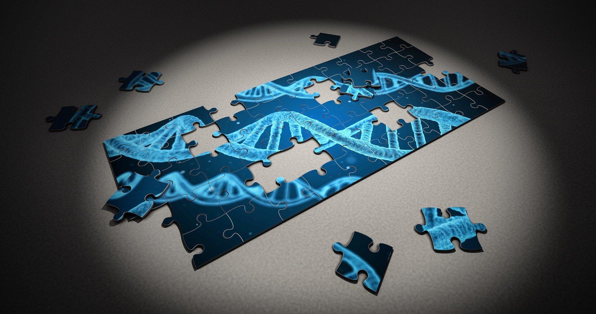 Entdeckung, die die Genetik des Down-Syndrom