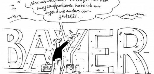 Felmys Blick: Max Müllers neuer Job