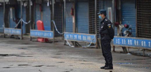 Forscher: Coronavirus könnte aus Fledermaus-Labor auf Fischmarkt in Wuhan gelangt sein