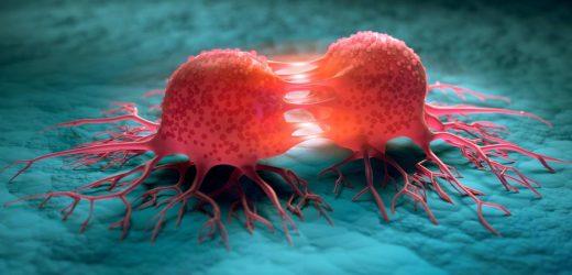 WHO warnt vor Verdopplung der weltweiten Krebsfälle
