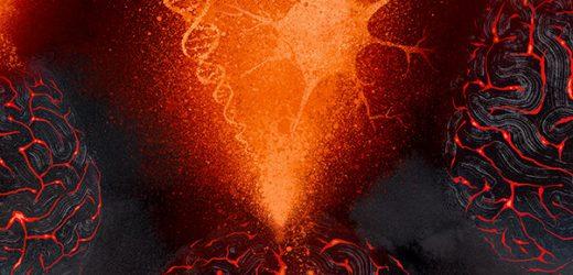 Wissenschaftler erstellen tool zum erkennen von Genen, die im Zusammenhang mit psychiatrischen, Erkrankungen des Gehirns