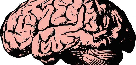 """Schnell-fail """" – Studie zeigt neuen Ansatz zur Identifizierung von Gehirn – – Ziele für den klinischen Behandlungen"""