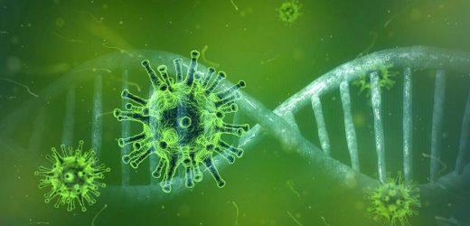 Forschungsteams arbeiten an Impfstoff gegen COVID-19