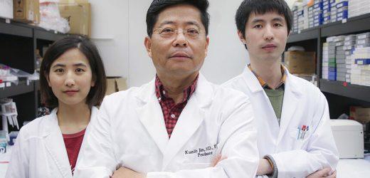 Forscher verwenden Stammzellen zur Bekämpfung von COVID-19 Lungenentzündung