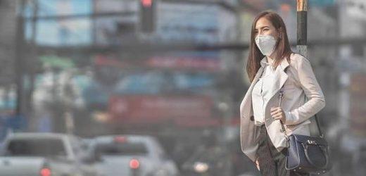 Harvard-Professorin beweist höhere Corona-Sterblichkeit bei schlechter Luftqualität