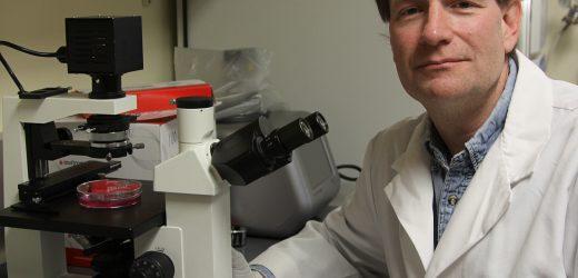Nahrungsergänzungsmittel eine wichtige Waffe für die Bekämpfung von COVID-19