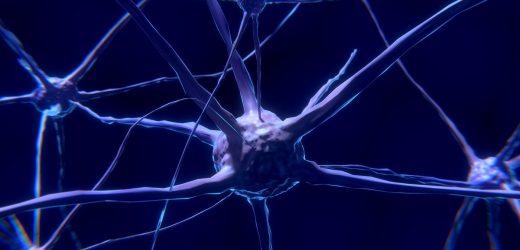 Tracking-Entwicklung des Gehirns-interface, dass die Kontrollen körperlichen Stoffwechsel