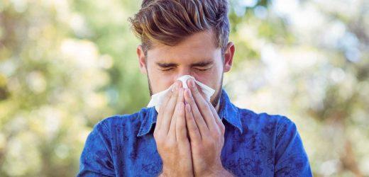 Heuschnupfen, Asthma und Coronavirus: Was müssen Betroffene jetzt wissen?