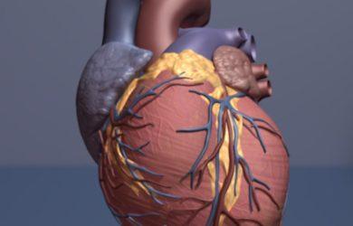 Indikatoren der Krebs kann auch Marker der Herzinsuffizienz