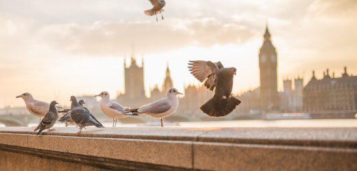 London bewegt sich auf boost-walking, Radfahren, nachdem coronavirus
