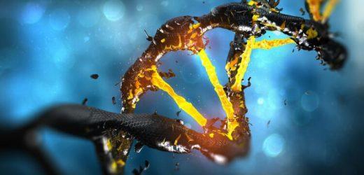 Krebs: Wie Tumoren entstehen – Naturheilkunde & Naturheilverfahren Fachportal