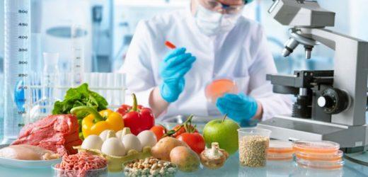 Vier häufigste Viren in Lebensmitteln und wie man sich davor schützt – Naturheilkunde & Naturheilverfahren Fachportal
