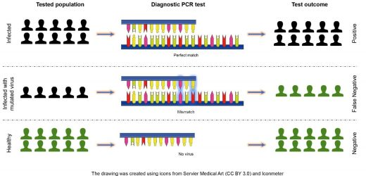 Setzen COVID-19 diagnostische tests, um die 'test'—wie halten Sie sich?