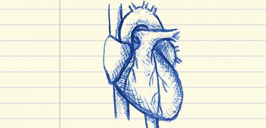 Rasse, gender-Ungleichgewichte in der Herz transplant Empfänger mit COVID-19-Infektion