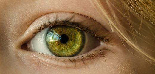 Wissenschaftler entdecken eine neue Verbindung zwischen den Augen und berühren,